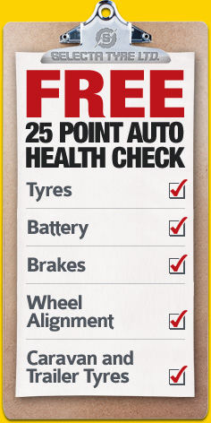 Free 25 Point Auto Health Check